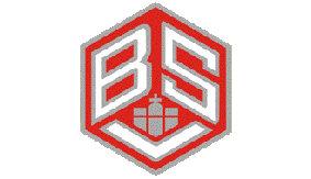 Betriebssportverband Hamburg (BSV) e.V.