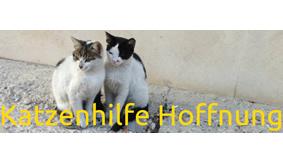 Katzenhilfe Hoffnung Gisela Benz